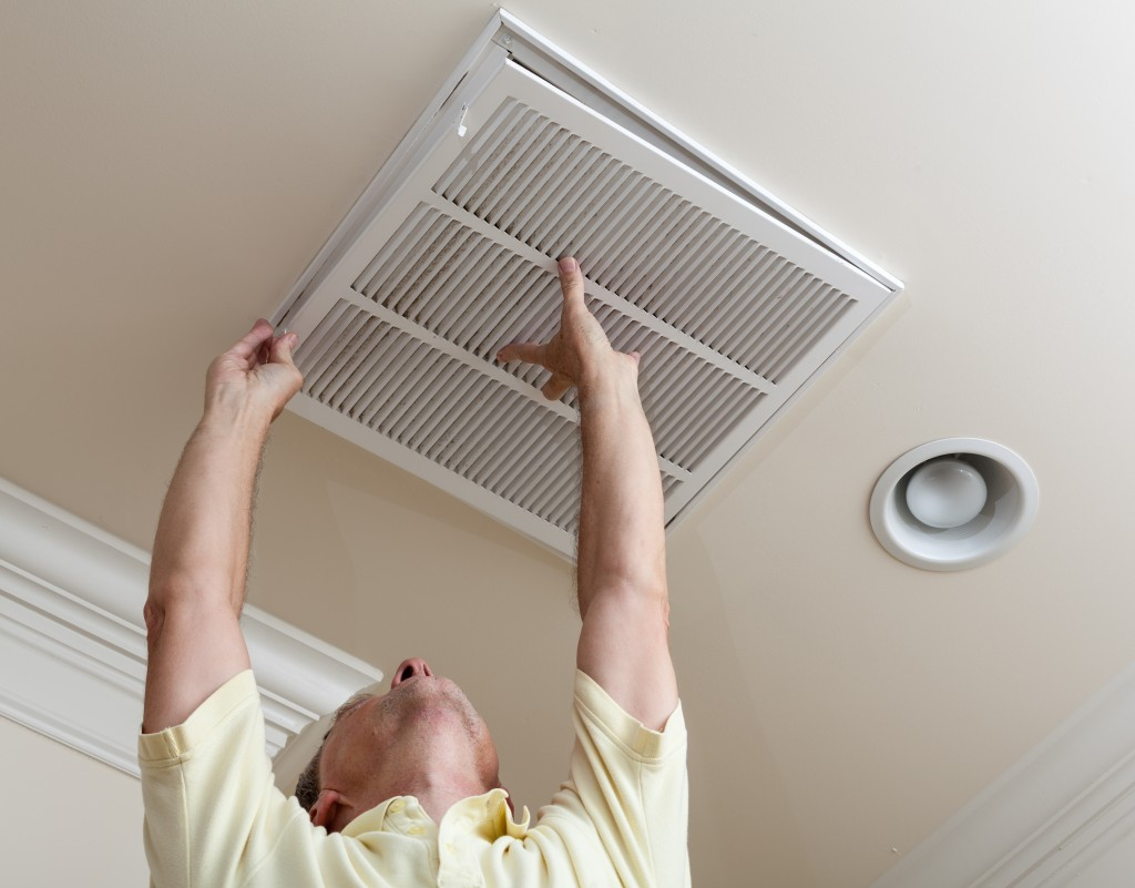 How to Banish Indoor Air Pollution to Manage Your Allergies