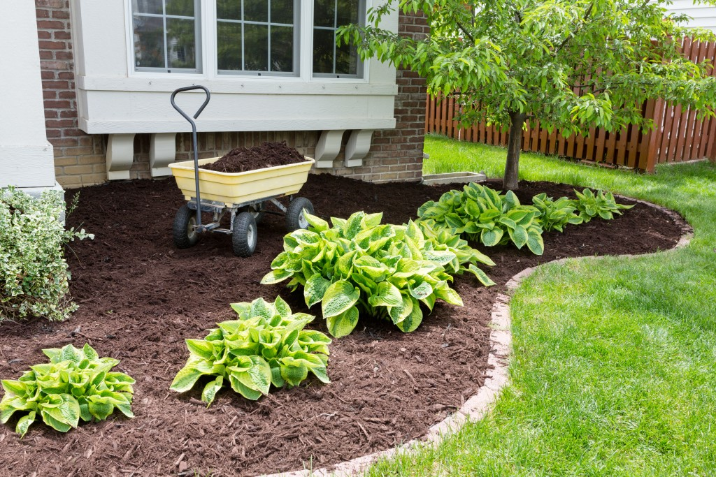 A Comprehensive Guide to Mulching